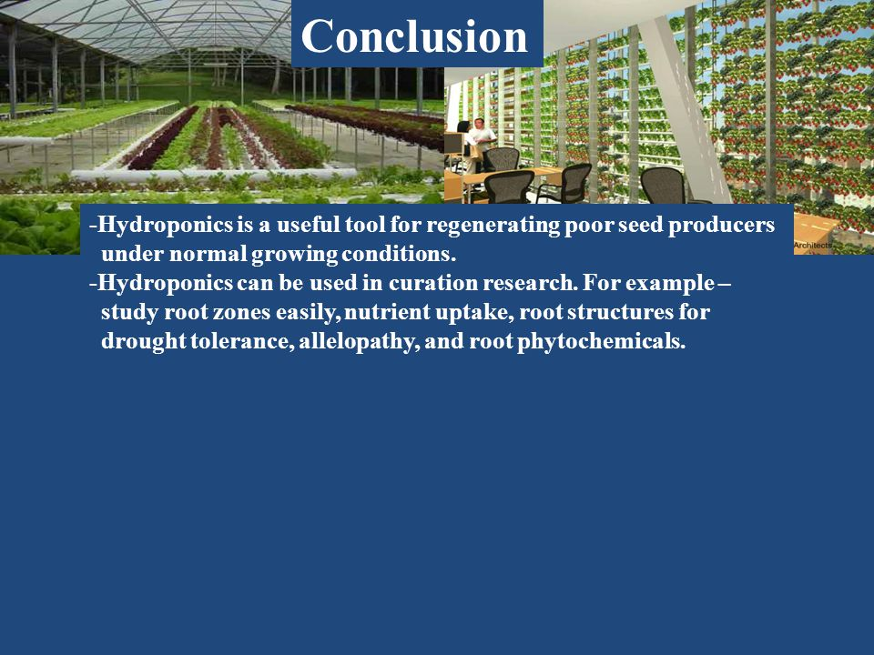 Conclusion -Hydroponics is a useful tool for regenerating poor seed producers under normal growing conditions.