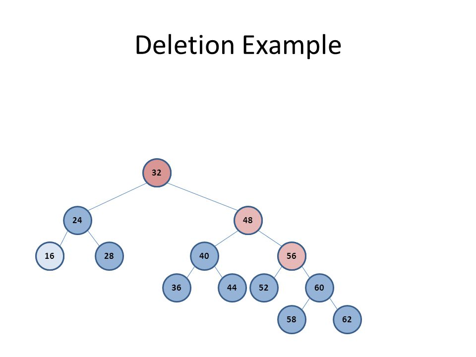 Deletion Example 32 48 4056 52603644 5862 16 24 2816 32 48 56