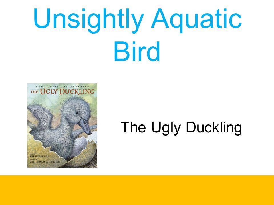 Unsightly Aquatic Bird The Ugly Duckling
