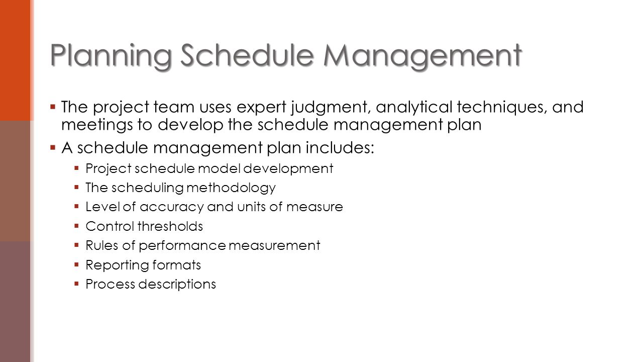  The project team uses expert judgment, analytical techniques, and meetings to develop the schedule management plan  A schedule management plan incl