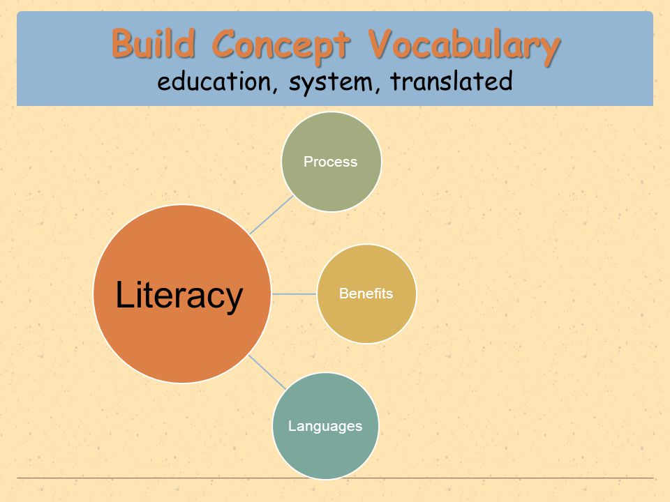 Build Concept Vocabulary Build Concept Vocabulary education, system, translated ProcessBenefits Languages Literacy
