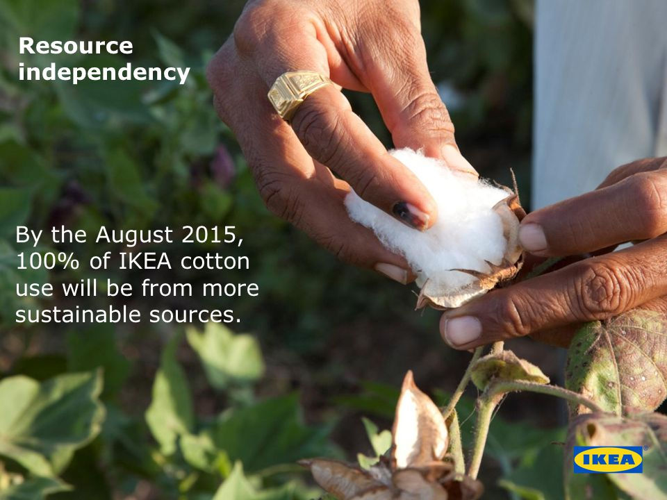 By the August 2015, 100% of IKEA cotton use will be from more sustainable sources.