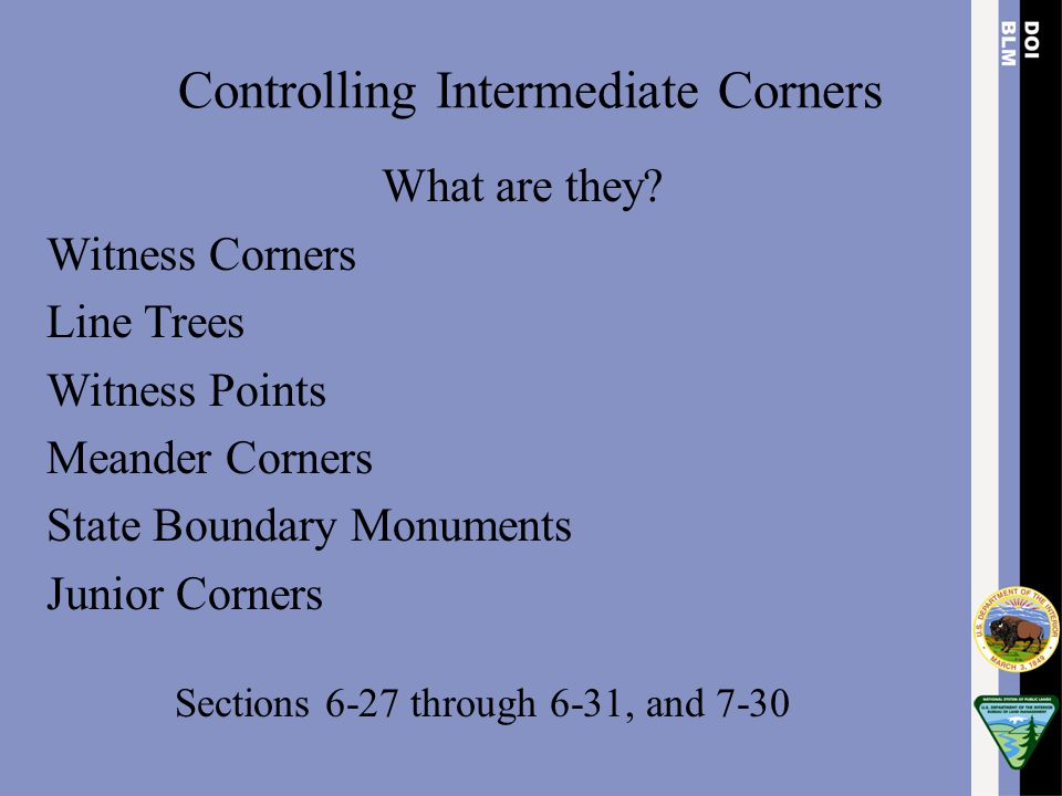 Controlling Intermediate Corners What are they? Witness Corners Line Trees Witness Points Meander Corners State Boundary Monuments Junior Corners Sect
