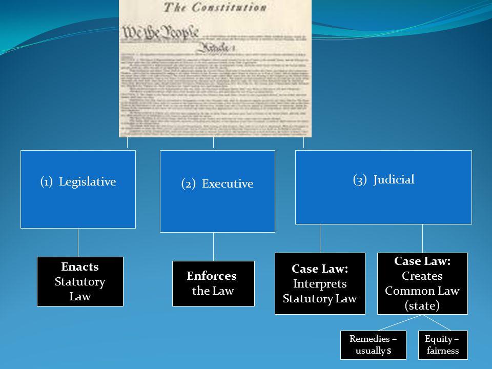 3 (3) Judicial (1) Legislative (2) Executive Enacts Statutory Law Enforces the Law Case Law: Interprets Statutory Law Case Law: Creates Common Law (state) Remedies – usually $ Equity – fairness