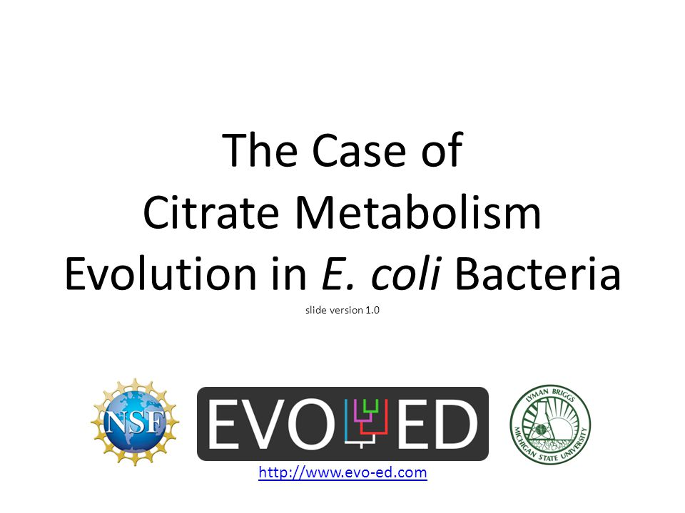 How is Citrate used for energy.