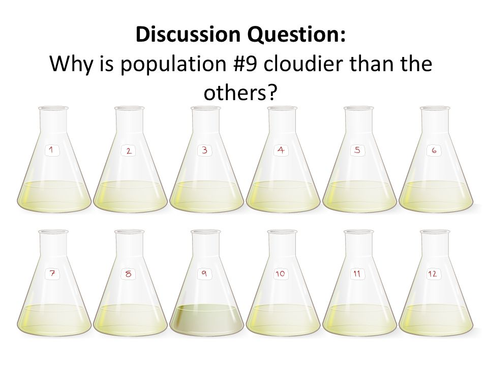 Discussion Question: Why is population #9 cloudier than the others?
