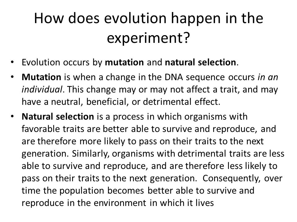 How does evolution happen in the experiment? Evolution occurs by mutation and natural selection. Mutation is when a change in the DNA sequence occurs