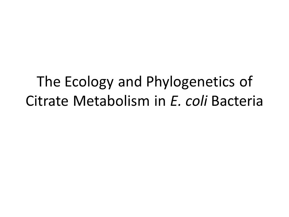 The Ecology and Phylogenetics of Citrate Metabolism in E. coli Bacteria