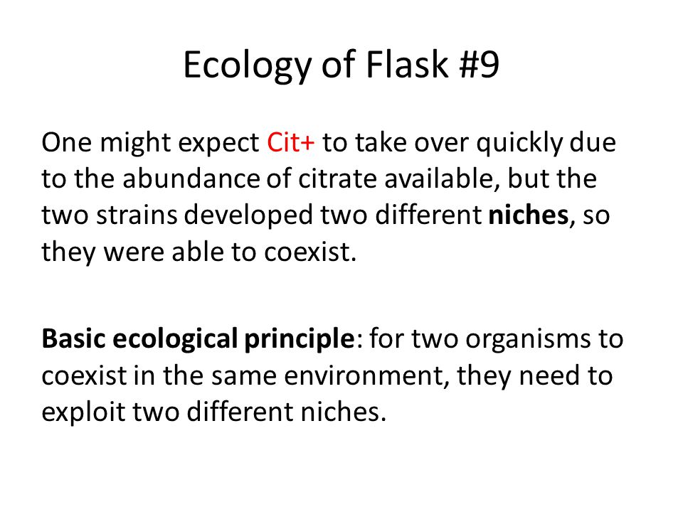 Ecology of Flask #9 One might expect Cit+ to take over quickly due to the abundance of citrate available, but the two strains developed two different