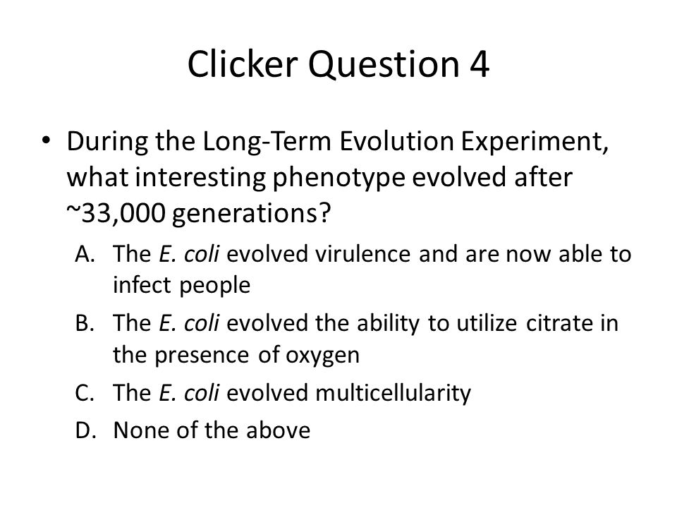 Clicker Question 4 During the Long-Term Evolution Experiment, what interesting phenotype evolved after ~33,000 generations? A.The E. coli evolved viru