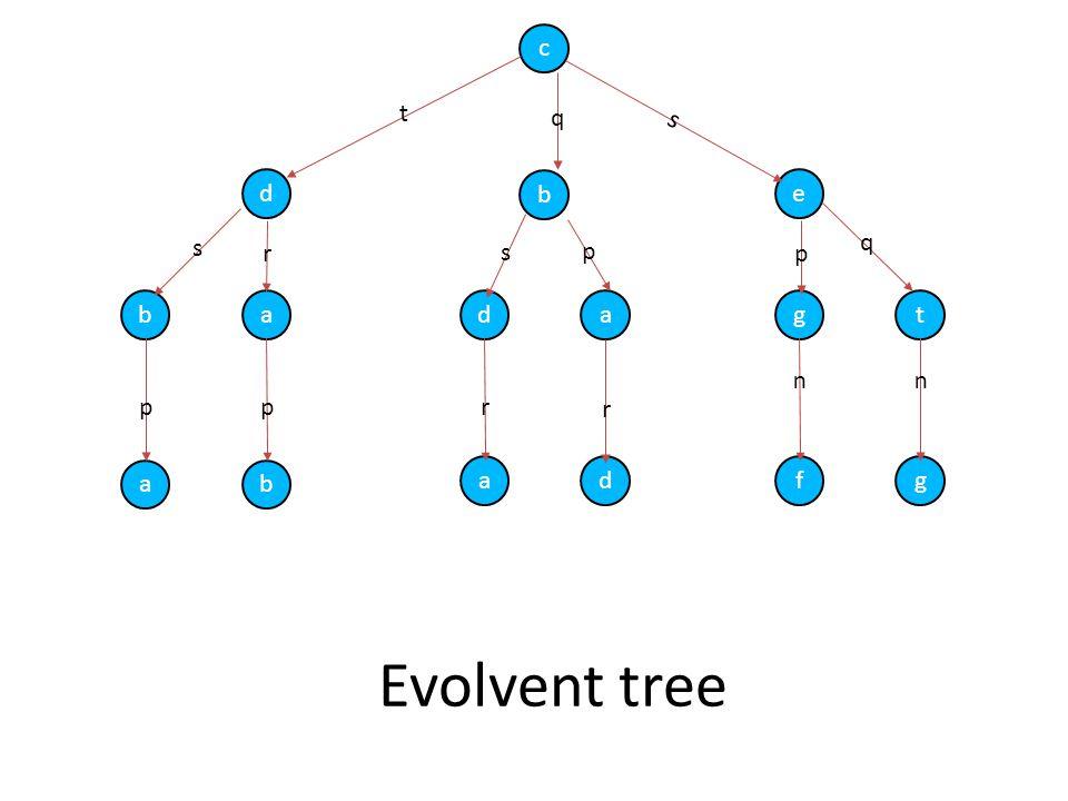 Evolvent tree c d b e badagt ab adfg t s q s r s p p q pprr uu