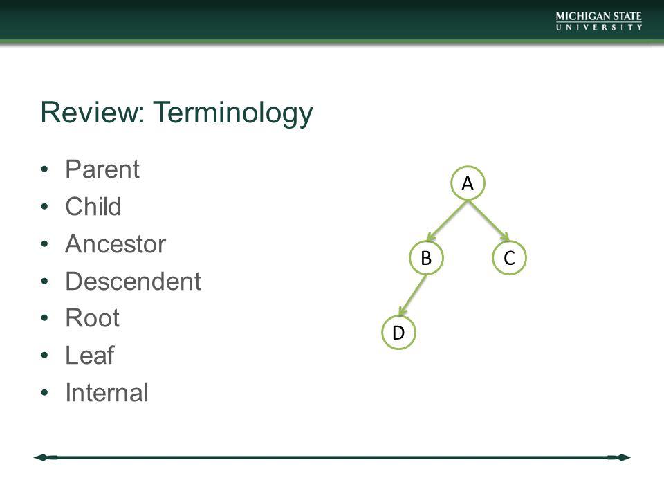 Review: Terminology Parent Child Ancestor Descendent Root Leaf Internal A BC D