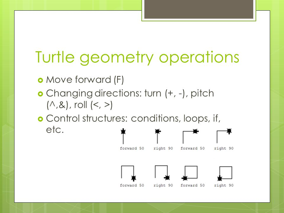 Turtle geometry operations  Move forward (F)  Changing directions: turn (+, -), pitch (^,&), roll ( )  Control structures: conditions, loops, if, etc.