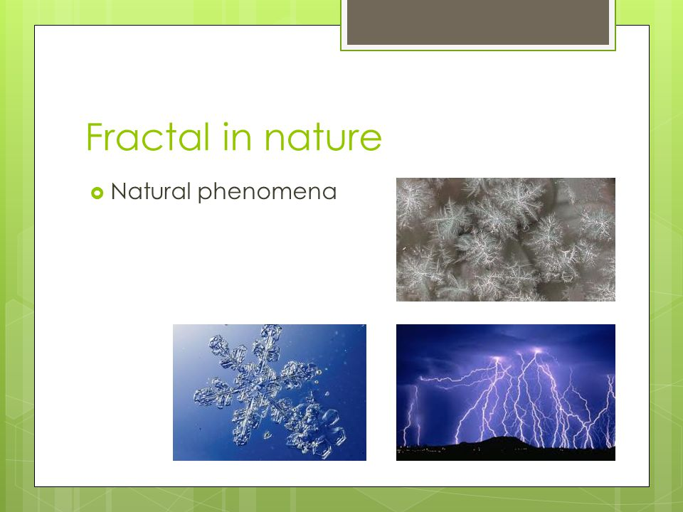 Fractal in nature  Natural phenomena
