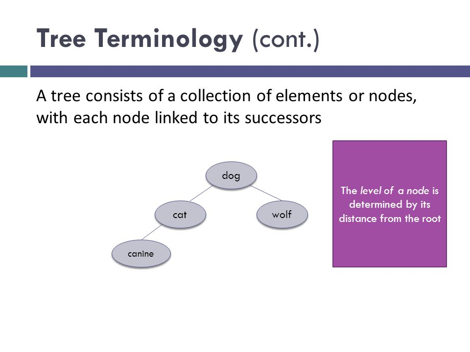 Tree Terminology (cont.) dog cat wolf canine A tree consists of a collection of elements or nodes, with each node linked to its successors The level of a node is determined by its distance from the root
