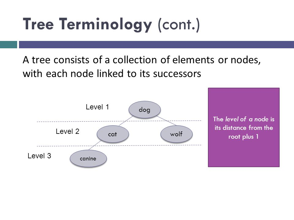 Tree Terminology (cont.) dog cat wolf canine A tree consists of a collection of elements or nodes, with each node linked to its successors The level of a node is its distance from the root plus 1 Level 1 Level 2 Level 3