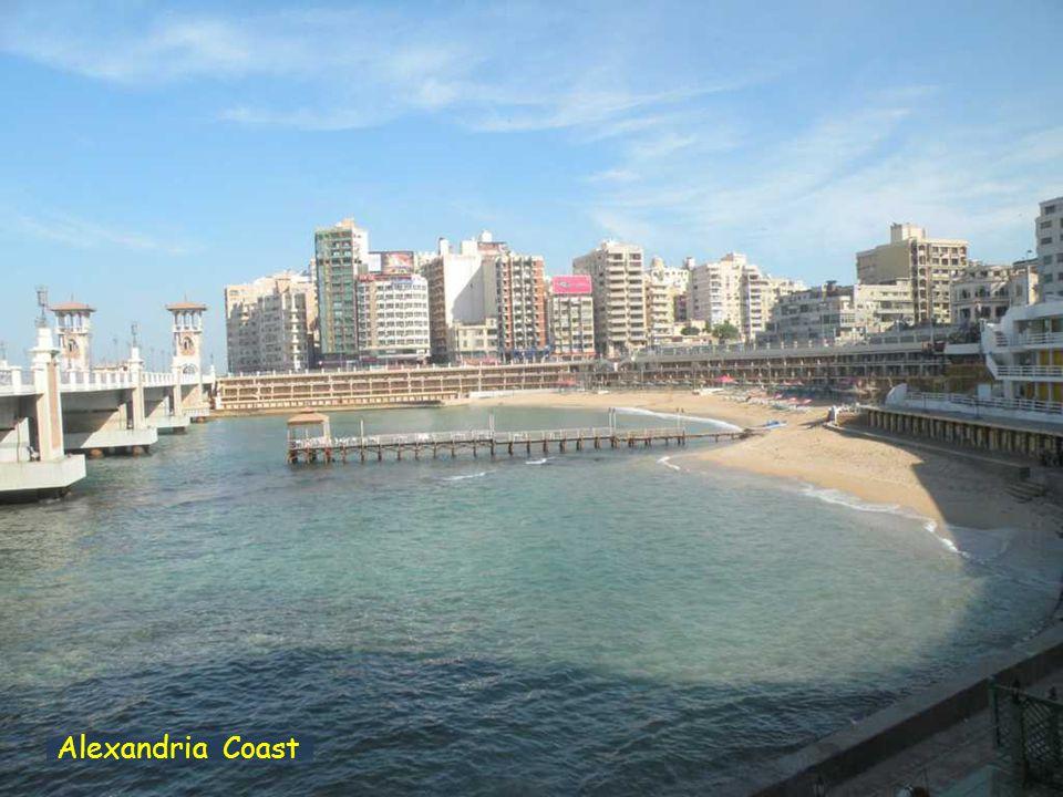 Alexandria - Borg El Arab Road