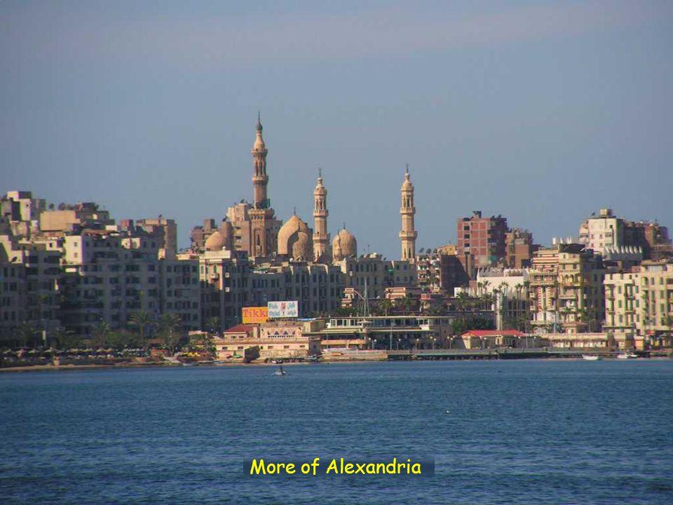 More of Alexandria