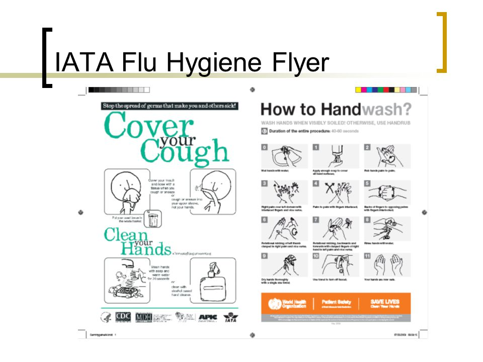 IATA Flu Hygiene Flyer