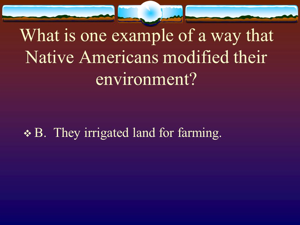 What is one example of a way that Native Americans modified their environment?  B. They irrigated land for farming.