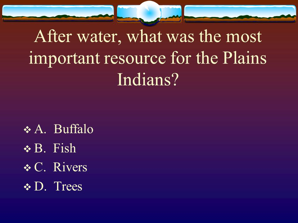 After water, what was the most important resource for the Plains Indians?  A. Buffalo  B. Fish  C. Rivers  D. Trees