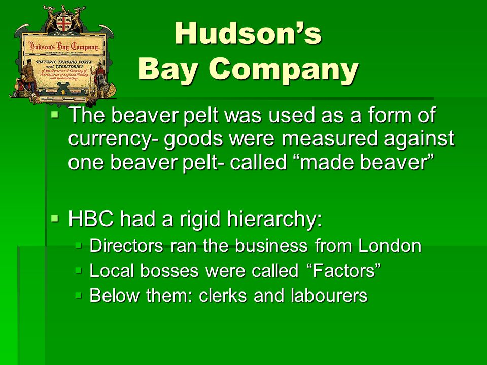 """Hudson's Bay Company  The beaver pelt was used as a form of currency- goods were measured against one beaver pelt- called """"made beaver""""  HBC had a r"""