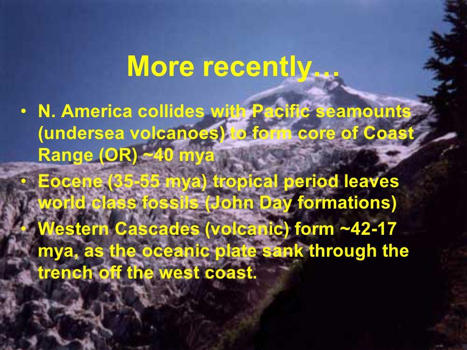 More recently… N. America collides with Pacific seamounts (undersea volcanoes) to form core of Coast Range (OR) ~40 mya Eocene (35-55 mya) tropical pe