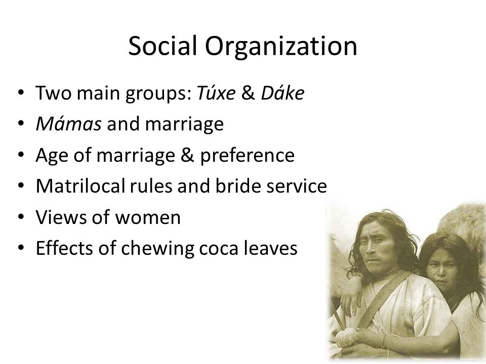 Social Organization Two main groups: Túxe & Dáke Mámas and marriage Age of marriage & preference Matrilocal rules and bride service Views of women Effects of chewing coca leaves