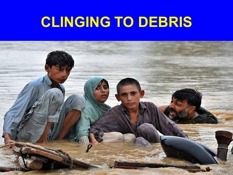 CLINGING TO DEBRIS