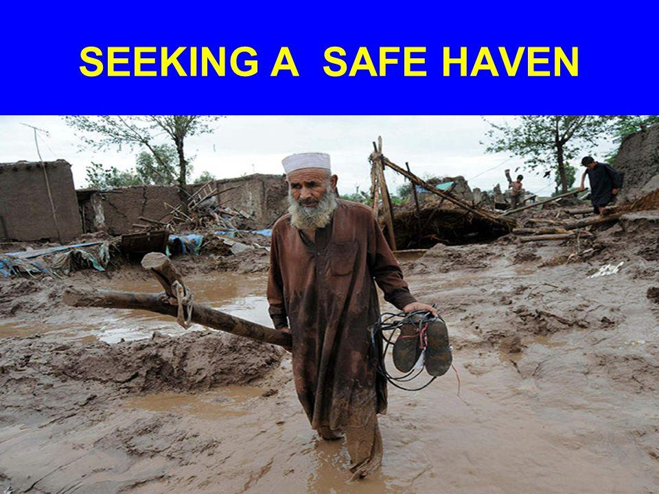 SEEKING A SAFE HAVEN