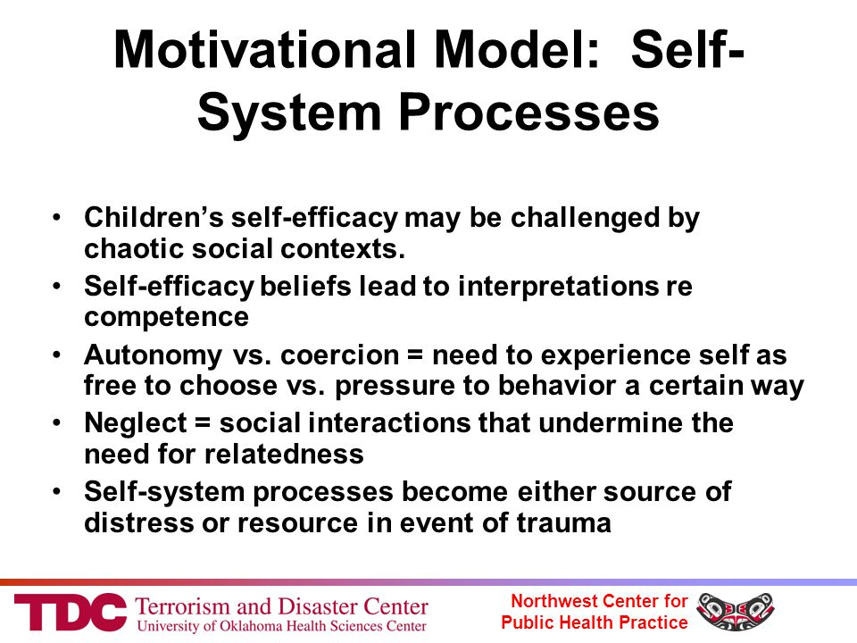 Northwest Center for Public Health Practice Motivational Model: Self- System Processes Children's self-efficacy may be challenged by chaotic social contexts.