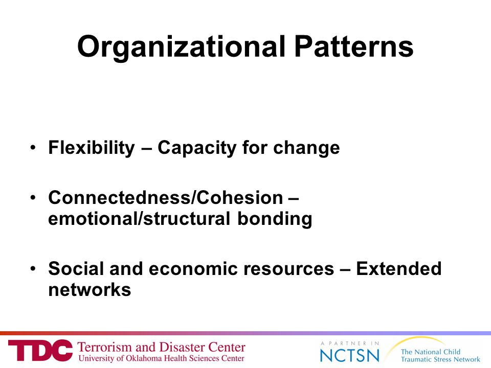 Organizational Patterns Flexibility – Capacity for change Connectedness/Cohesion – emotional/structural bonding Social and economic resources – Extended networks