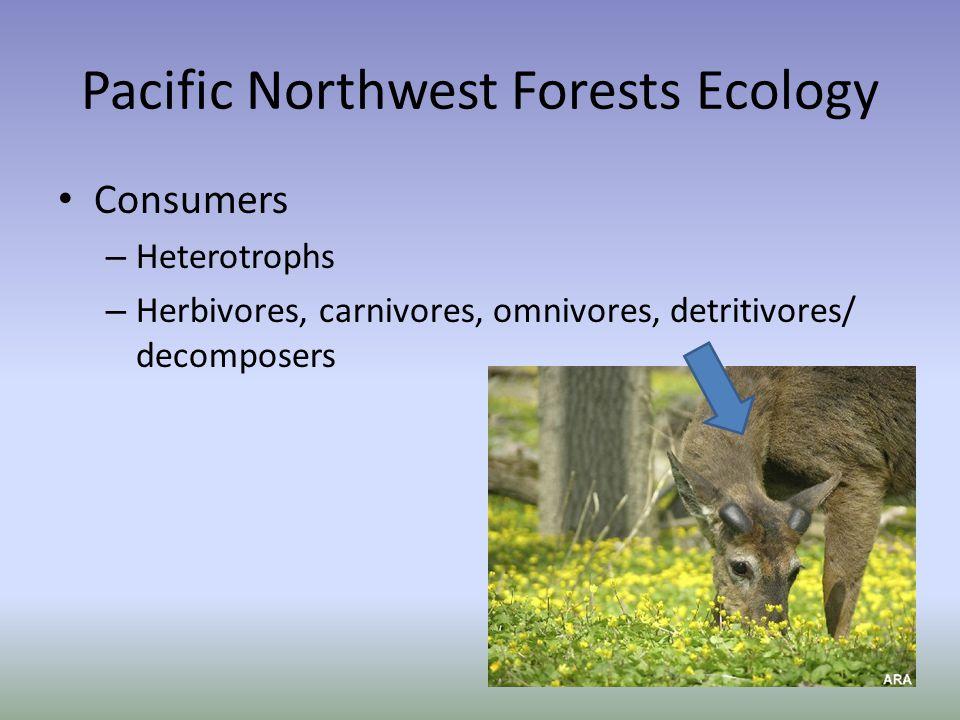 Pacific Northwest Forests Ecology Consumers – Heterotrophs – Herbivores, carnivores, omnivores, detritivores/ decomposers