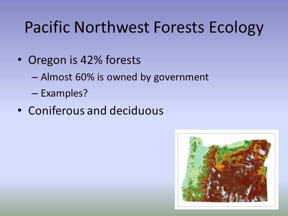 Pacific Northwest Forests Ecology Oregon is 42% forests – Almost 60% is owned by government – Examples.