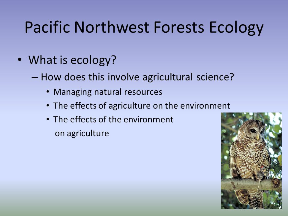 Pacific Northwest Forests Ecology What is ecology.
