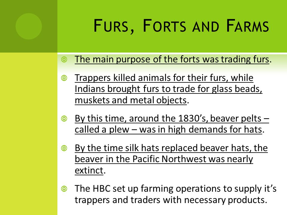 F URS, F ORTS AND F ARMS  The main purpose of the forts was trading furs.