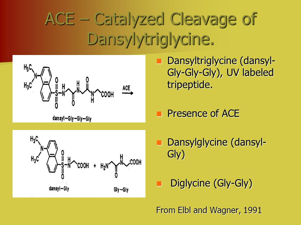 ACE – Catalyzed Cleavage of Dansylytriglycine. Dansyltriglycine (dansyl- Gly-Gly-Gly), UV labeled tripeptide. Dansyltriglycine (dansyl- Gly-Gly-Gly),