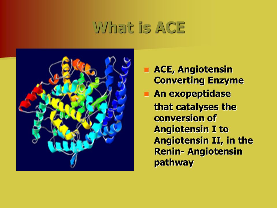 What is ACE ACE, Angiotensin Converting Enzyme ACE, Angiotensin Converting Enzyme An exopeptidase An exopeptidase that catalyses the conversion of Angiotensin I to Angiotensin II, in the Renin- Angiotensin pathway