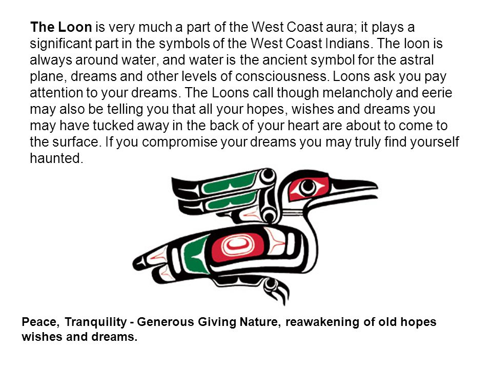The Loon is very much a part of the West Coast aura; it plays a significant part in the symbols of the West Coast Indians.