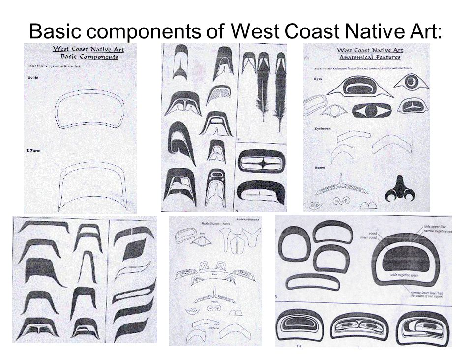 Basic components of West Coast Native Art: