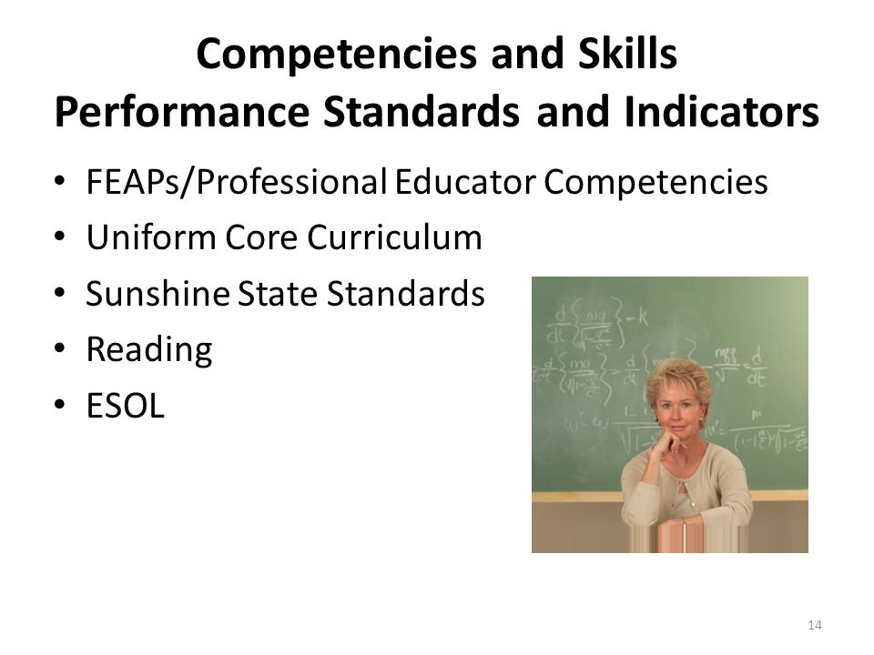 Competencies and Skills Performance Standards and Indicators FEAPs/Professional Educator Competencies Uniform Core Curriculum Sunshine State Standards Reading ESOL 14
