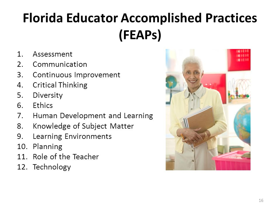 Florida Educator Accomplished Practices (FEAPs) 1.Assessment 2.Communication 3.Continuous Improvement 4.Critical Thinking 5.Diversity 6.Ethics 7.Human Development and Learning 8.Knowledge of Subject Matter 9.Learning Environments 10.Planning 11.Role of the Teacher 12.Technology 16