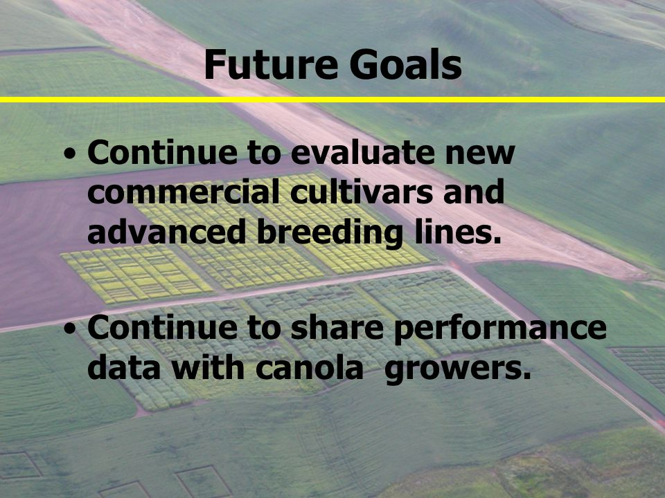 Future Goals Continue to evaluate new commercial cultivars and advanced breeding lines.