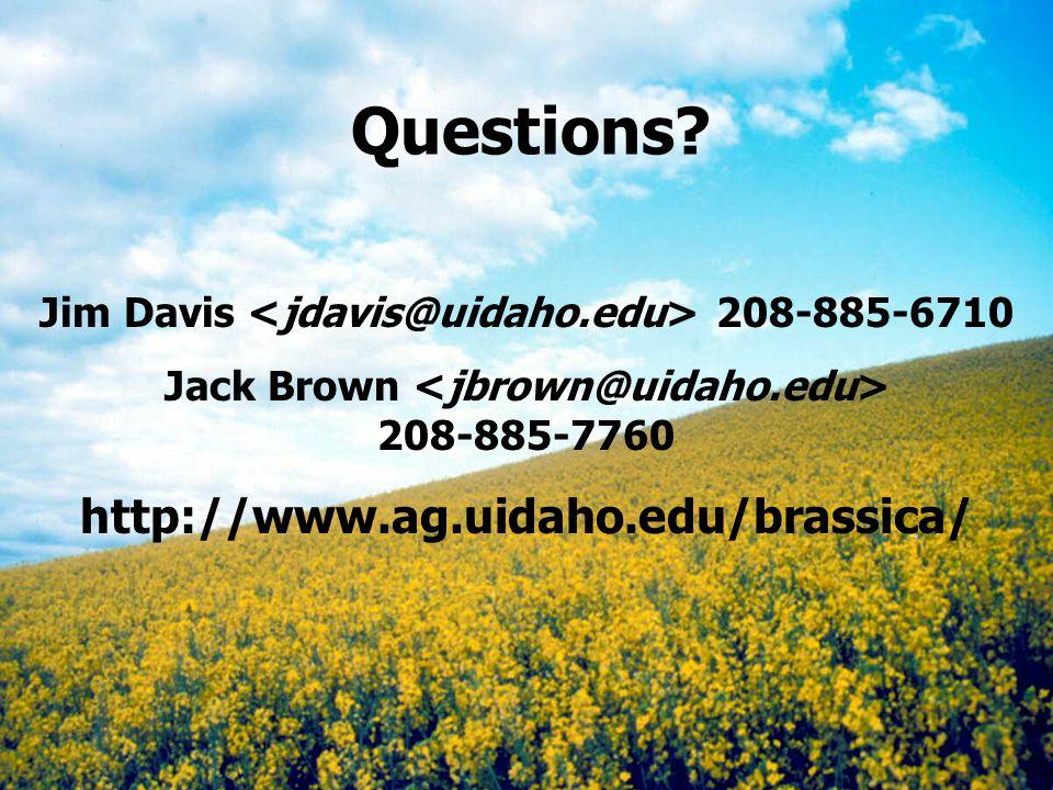 Questions? Jim Davis 208-885-6710 Jack Brown 208-885-7760 http://www.ag.uidaho.edu/brassica/