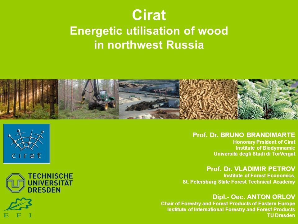  Prospects for the energetic utilisation of wood  Dendromass potential of northwest Russia  Pellet production in northwest Russia  New pellet plant in the Leningrad Region 16.09.2010 2 EFI 2010 Annual Conference, Dresden, Germany