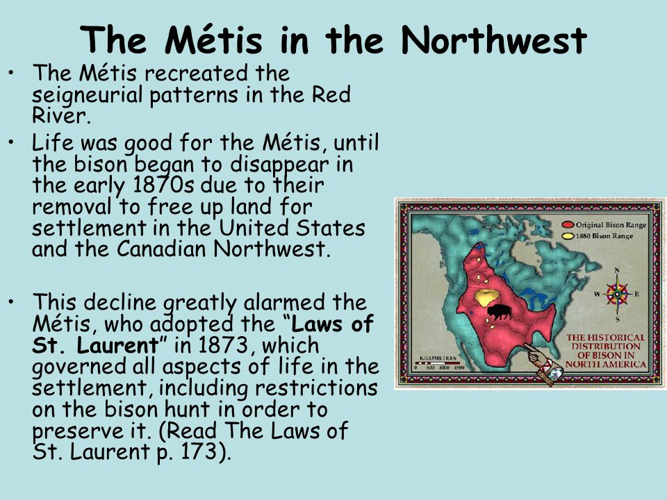 The Métis in the Northwest The Métis recreated the seigneurial patterns in the Red River. Life was good for the Métis, until the bison began to disapp