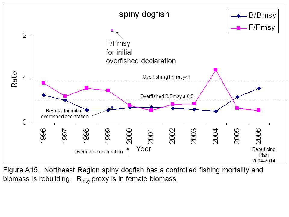 Overfished B/Bmsy ≤ 0.5 B/Bmsy for initial overfished declaration Overfished declaration Rebuilding Plan 2004-2014 Overfishing F/Fmsy≥1 Figure A15.