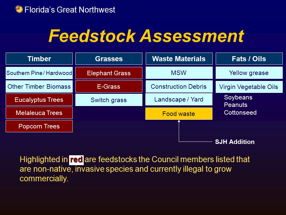 Florida's Great Northwest Feedstock Assessment TimberGrasses Southern Pine / Hardwood Other Timber Biomass Eucalyptus Trees Melaleuca Trees Popcorn Tr