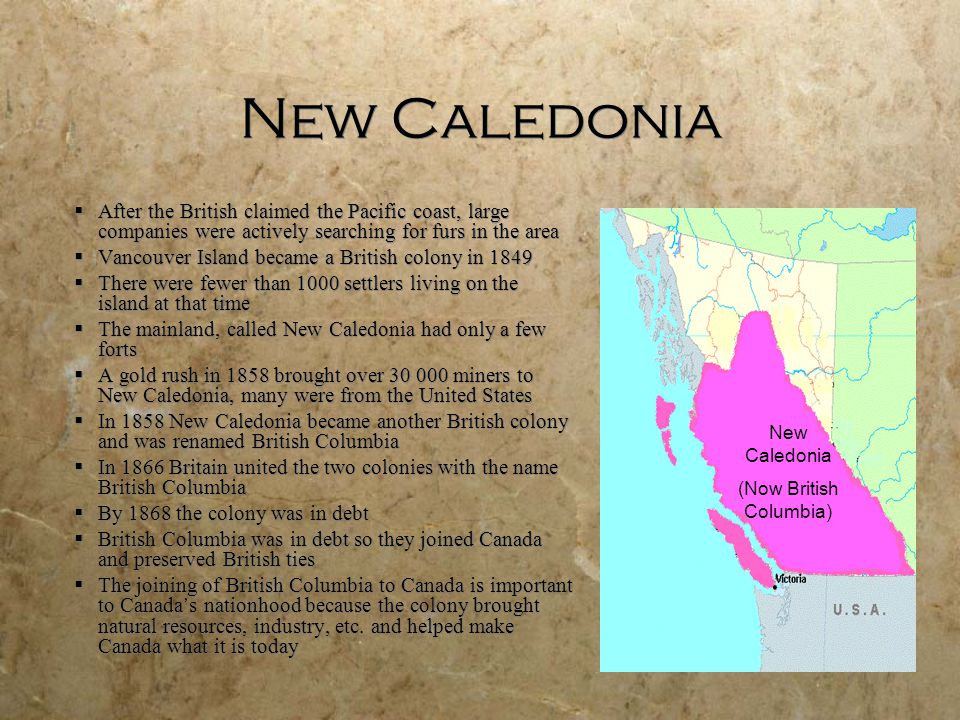 New Caledonia  After the British claimed the Pacific coast, large companies were actively searching for furs in the area  Vancouver Island became a