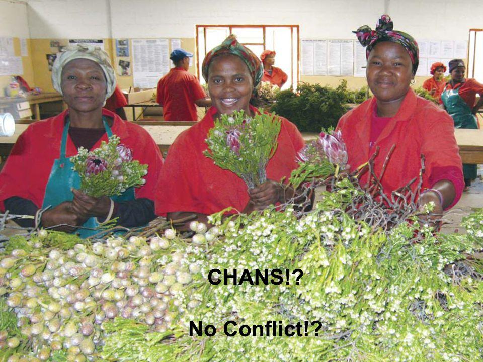 CHANS! No Conflict!